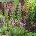 2015 - Сад с цветниками - 36