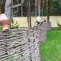 2014 - Шумят сосновые леса - 14