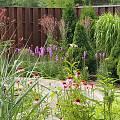2015 - Сад с цветниками - 20