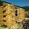 2019 - Строительство деревянных домов и бань - 14