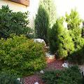 2013 - Малый сад - 58