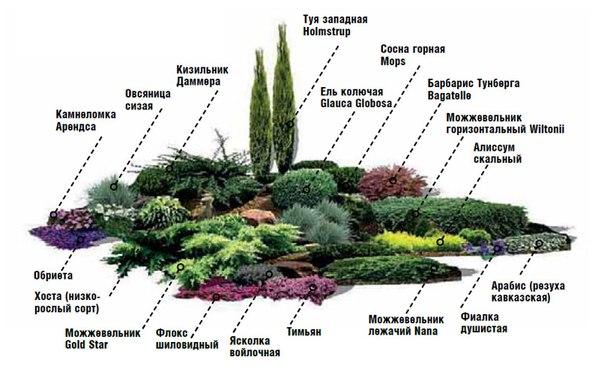 alpiiskaya_gorka_28.jpg