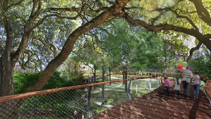 canopy-walk-spring-noon-678x381.jpg