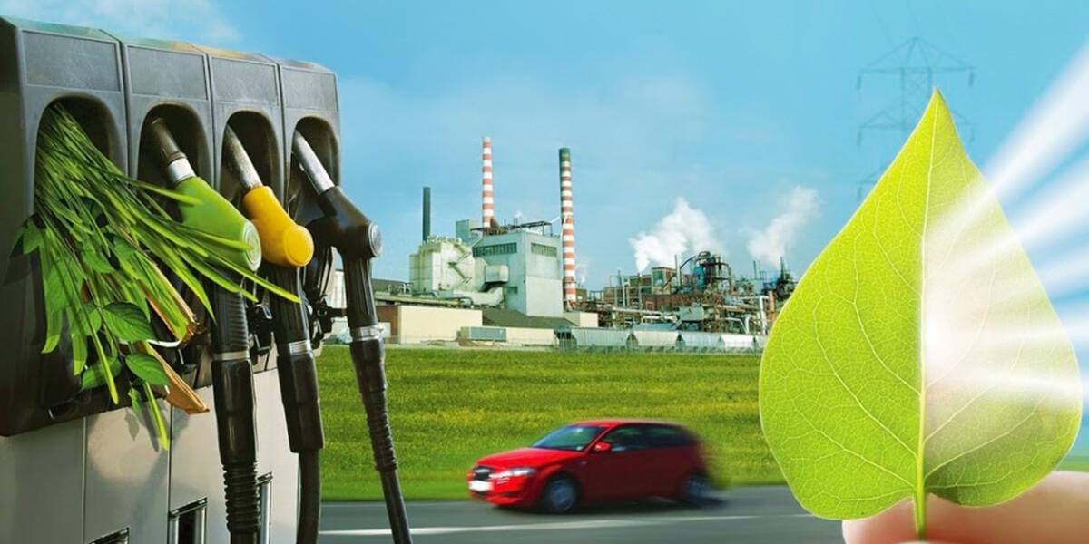 kongress-i-vystavka-biomassa-toplivo-i-energiya-itogi.jpg