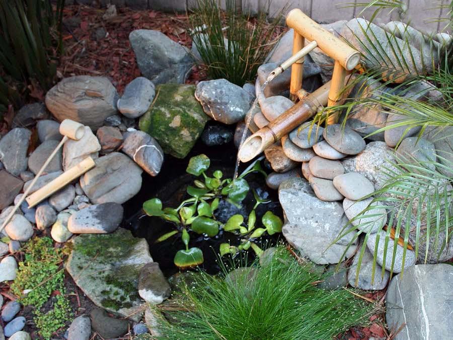 spring-bamboo-in-garden-02__.jpg