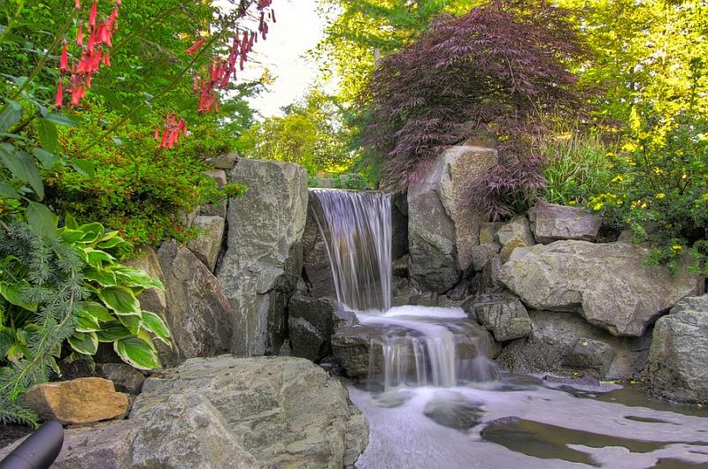 poolside-landscape-design-14.jpg