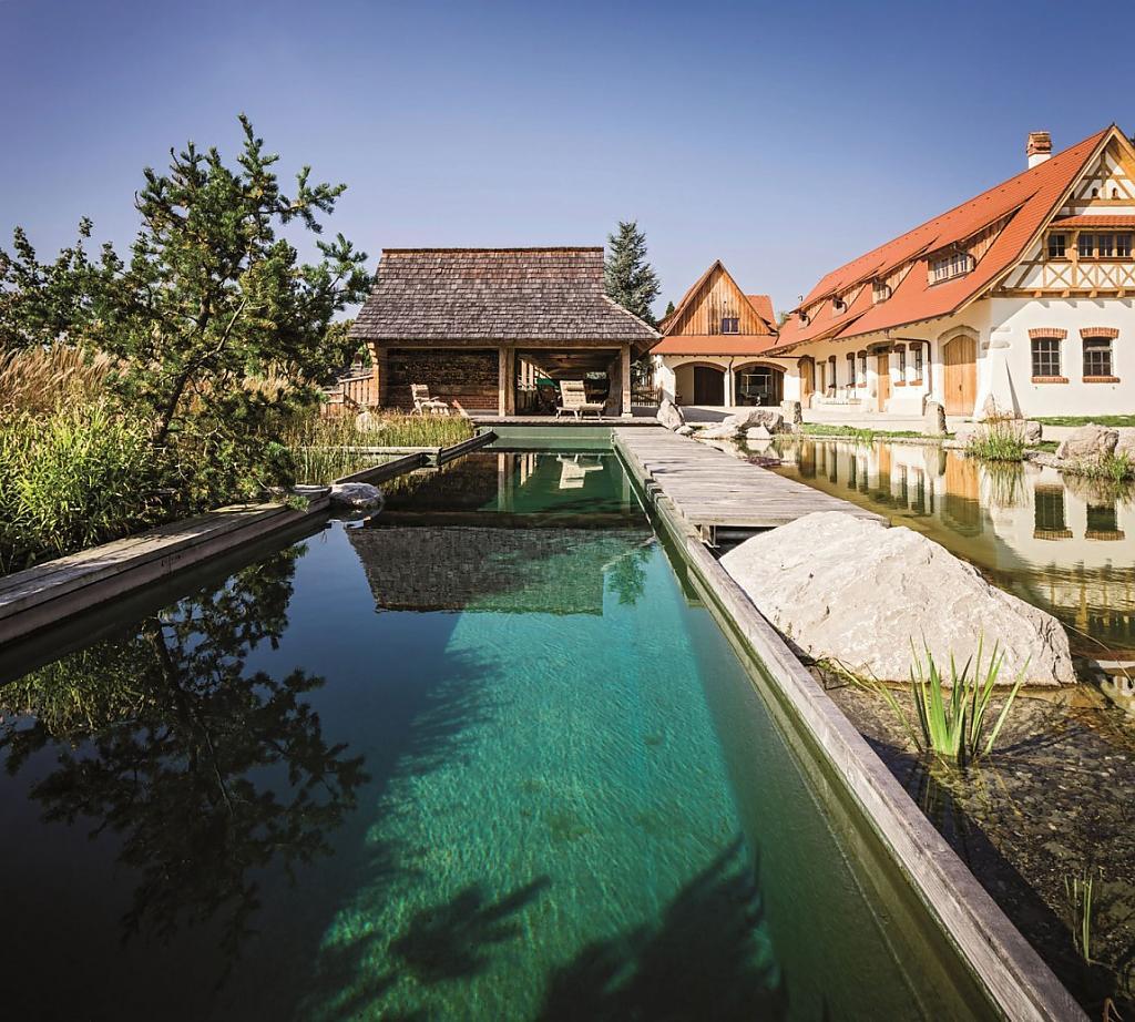 natural-pool-03.jpg