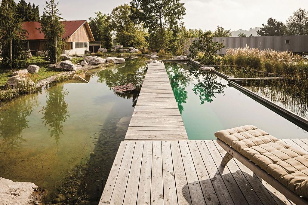 natural-pool-11.jpg
