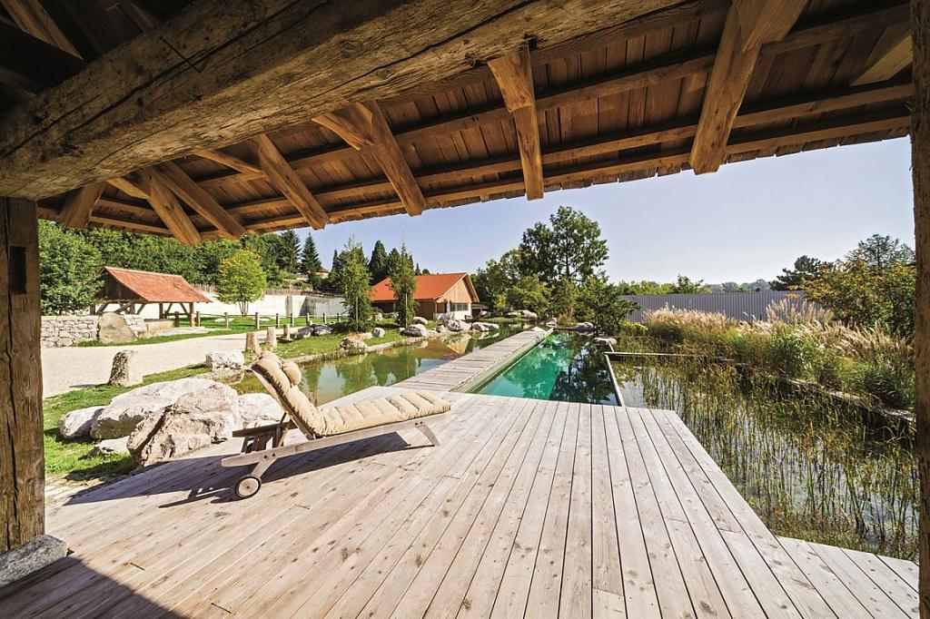 natural-pool-12.jpg