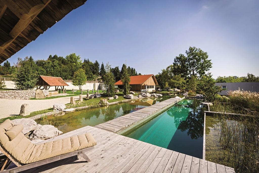 natural-pool-13.jpg