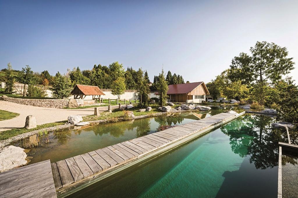 natural-pool-14.jpg