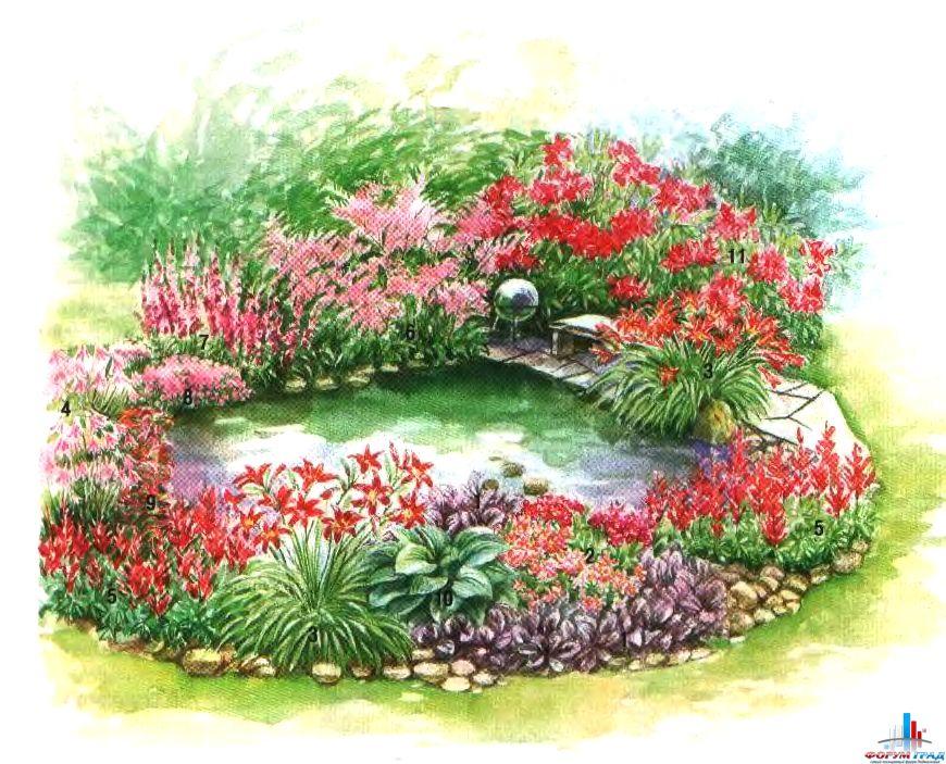 decorating-pond-plants-04.jpg