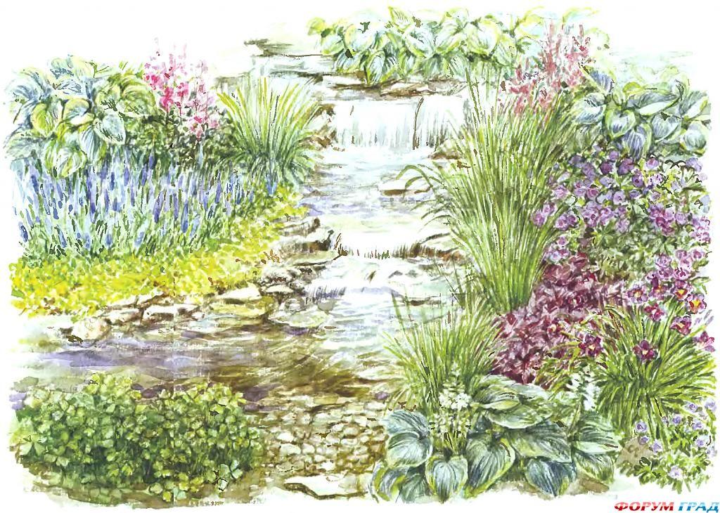 decorating-pond-plants-07.jpg