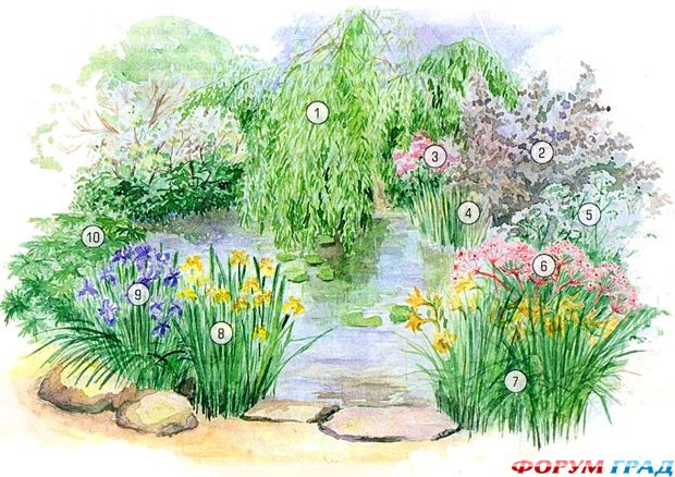 decorating-pond-plants-09.jpg