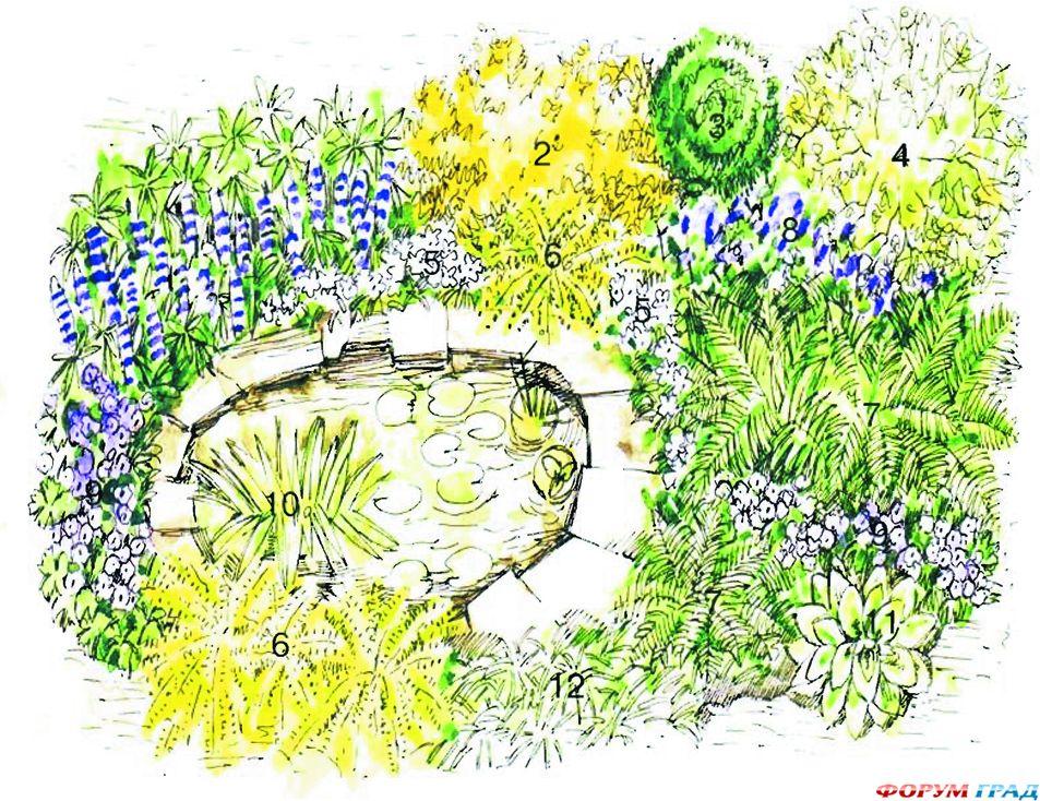 decorating-pond-plants-11.jpg