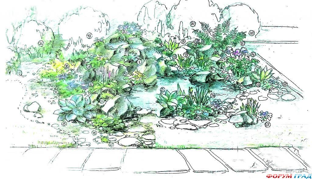 decorating-pond-plants-12.jpg