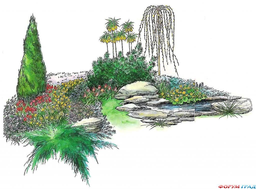 decorating-pond-plants-13.jpg