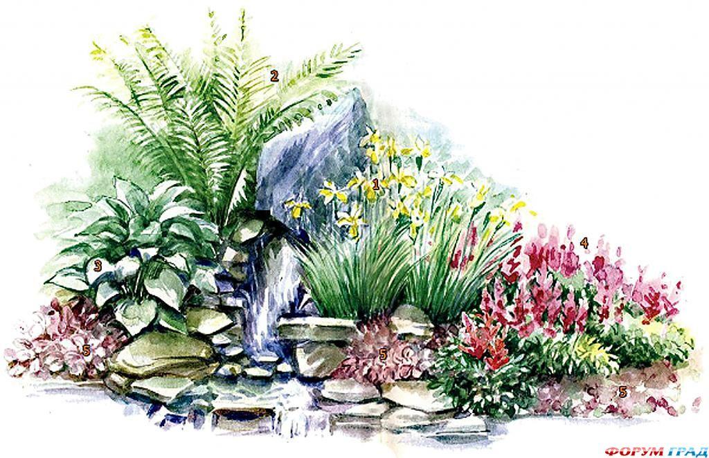 decorating-pond-plants-15.jpg