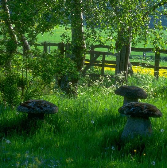 garden-in-country-style-02.jpg