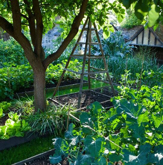 garden-in-country-style-05.jpg