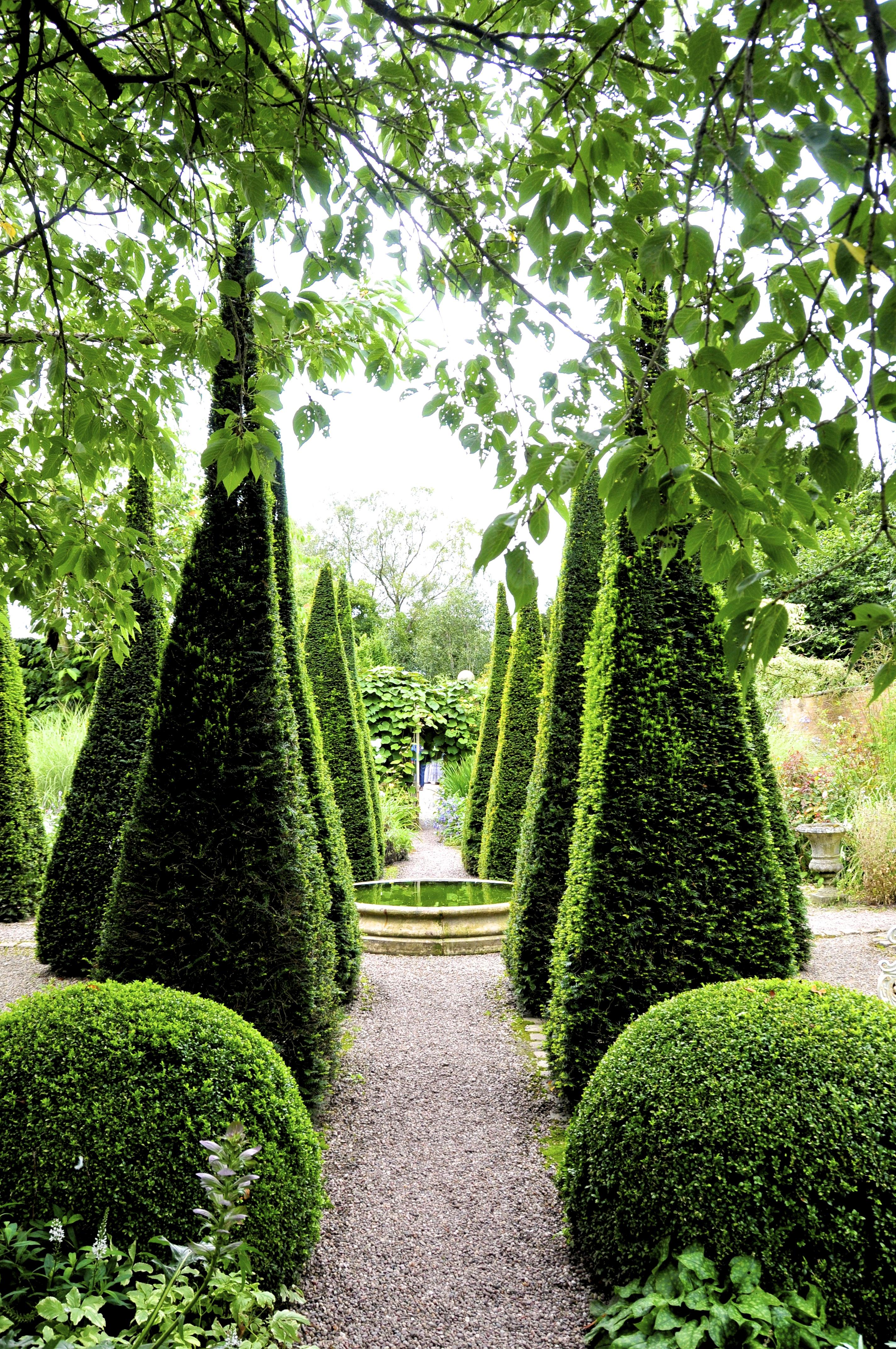 boxwood-gardens-14.jpg