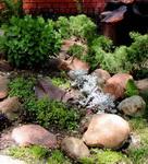 Рокарій - кам'янистий садок