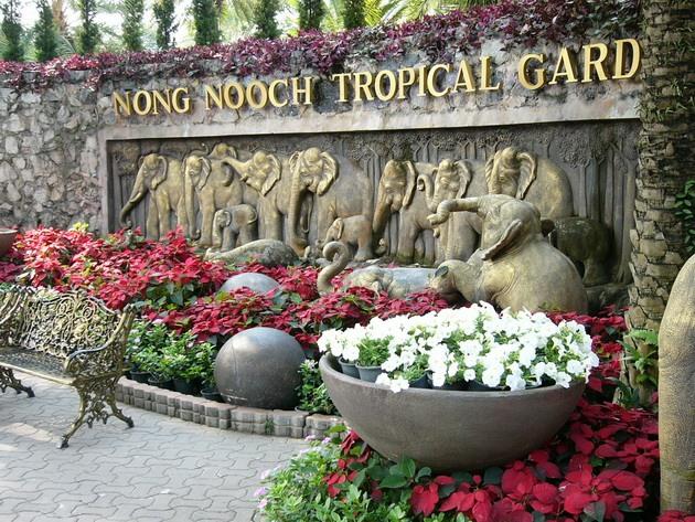 tropichnuj_park_nong_nuch_1.jpg
