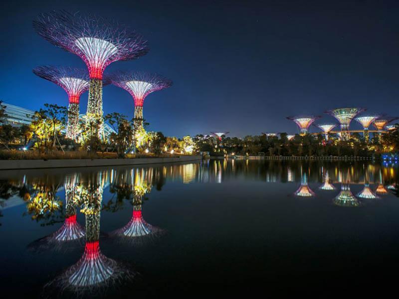 super-dereva-sadu_singapyru_11.jpg