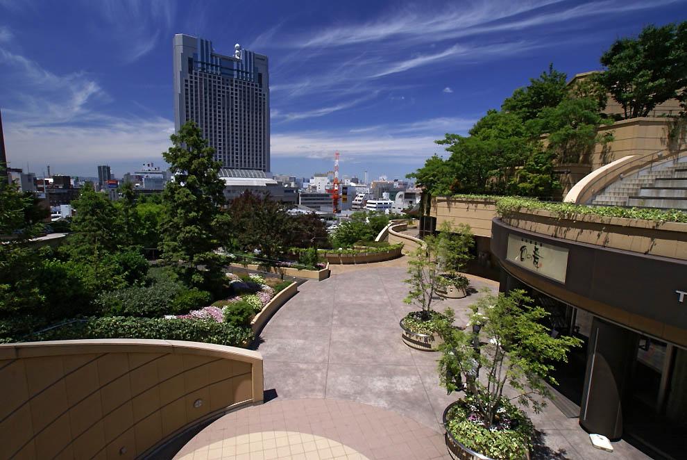 zelenue_zonu-namba-parki_v_japonie_11.jpg