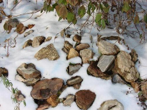 Як зробити кам'янисту гірку або рокарій своїми руками?