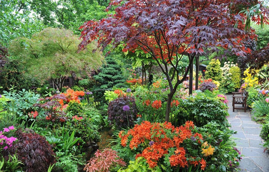 four_seasons_garden_17.jpg