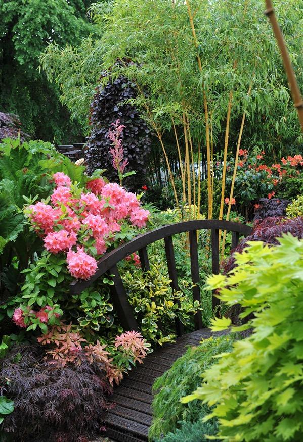 four_seasons_garden_9.jpg