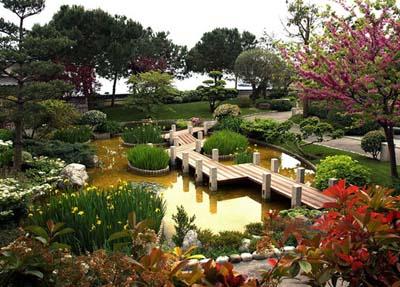 Створення японського саду