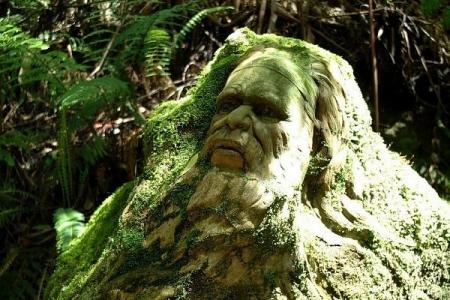 lisovi_skulpturu_avstralija_2.jpg