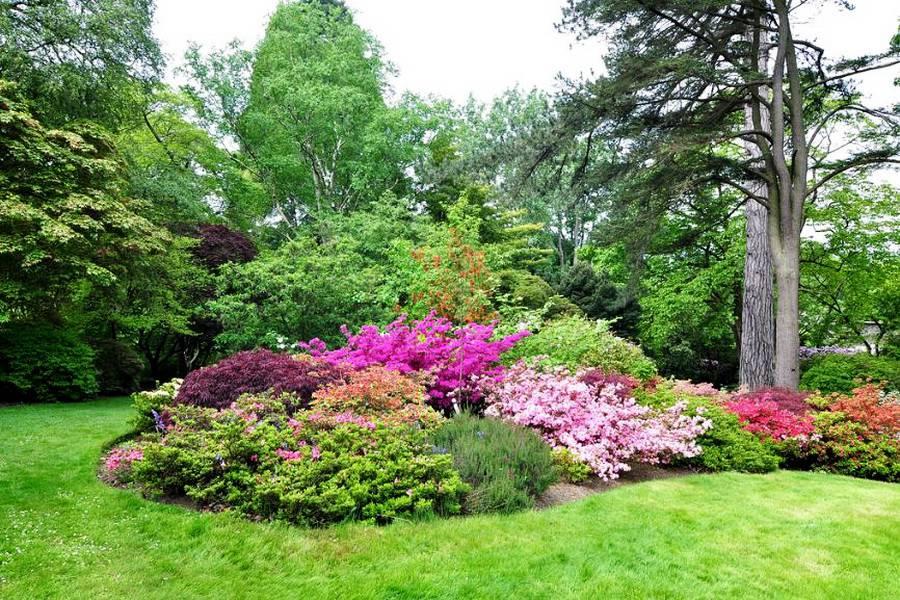 bodnant_garden_20.jpg