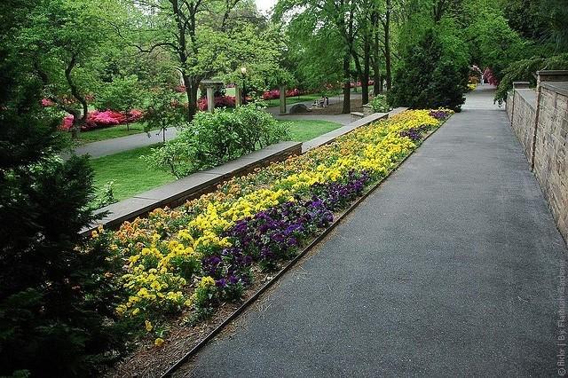bryklinskii_botanicheskii_sad_v_new_yorke_1.jpg