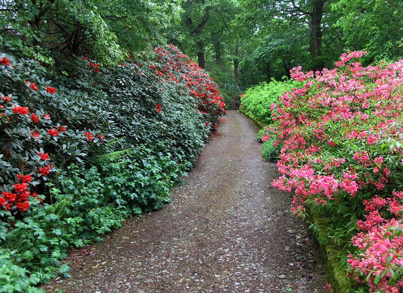 mount_congreve_gardens_36.jpg