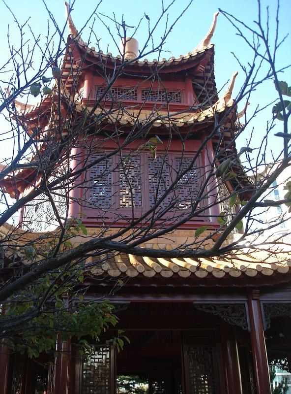 kitajskij_sad_8.jpg