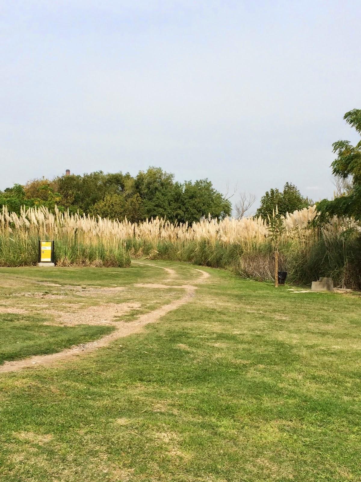 park_reserva_ecologica_argentina_5.jpg