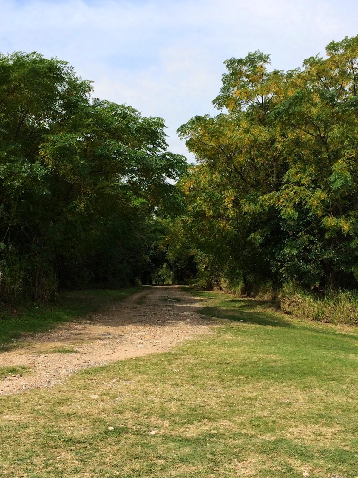park_reserva_ecologica_argentina_6.jpg