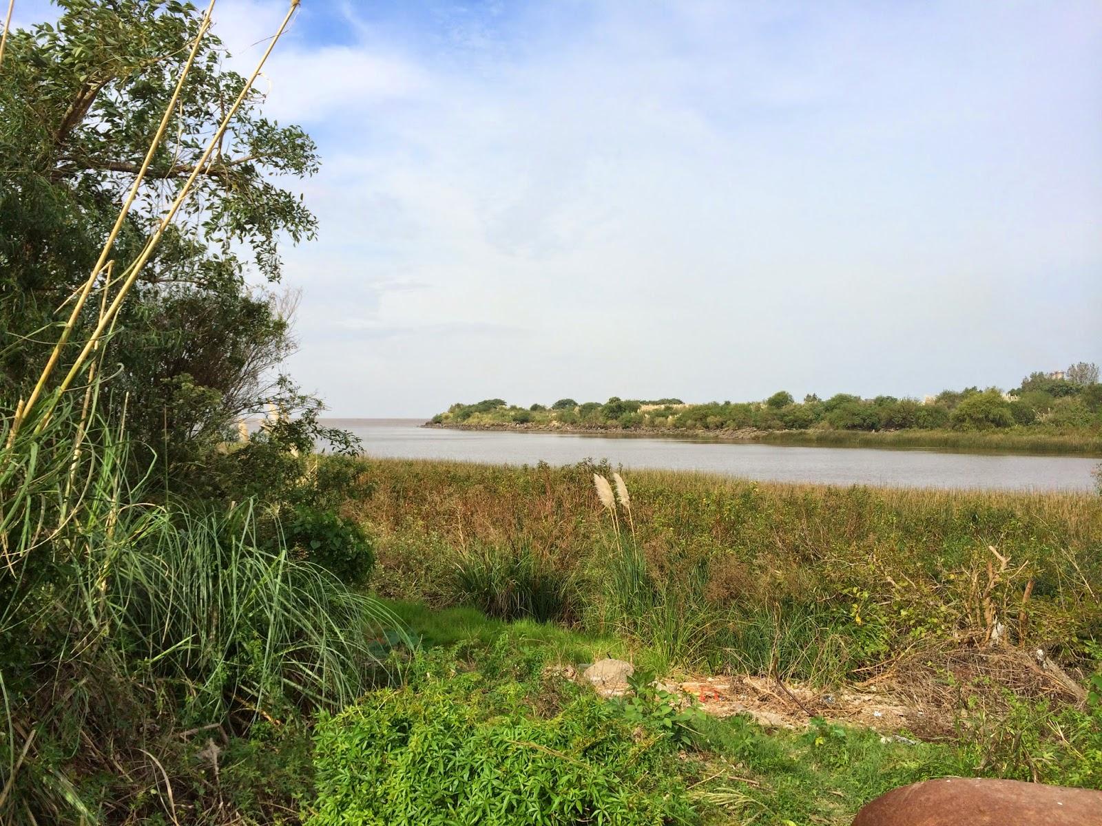 park_reserva_ecologica_argentina_7.jpg
