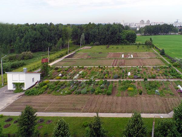 botanicheskij_sad_biloruskogo_universiteta_1.jpg