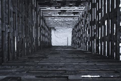 portal_na_krau_lesa_5.jpg