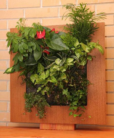 Живі картини від Wall of flowers