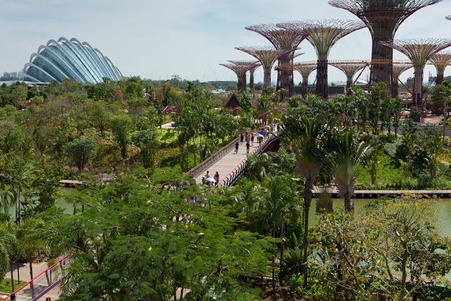 sadi_y_zaliva_v_singapyre_18.jpg
