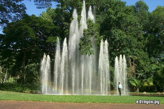 botanicheskij_sad_djorza_brauna_avstralija_5.jpg