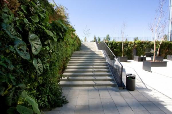 Вертикальні сади Майкла Хеллгрена (Michael Hellgren)