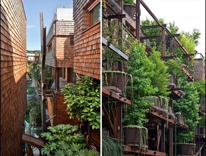 25-verde-dom_na_derevjah_4.jpg