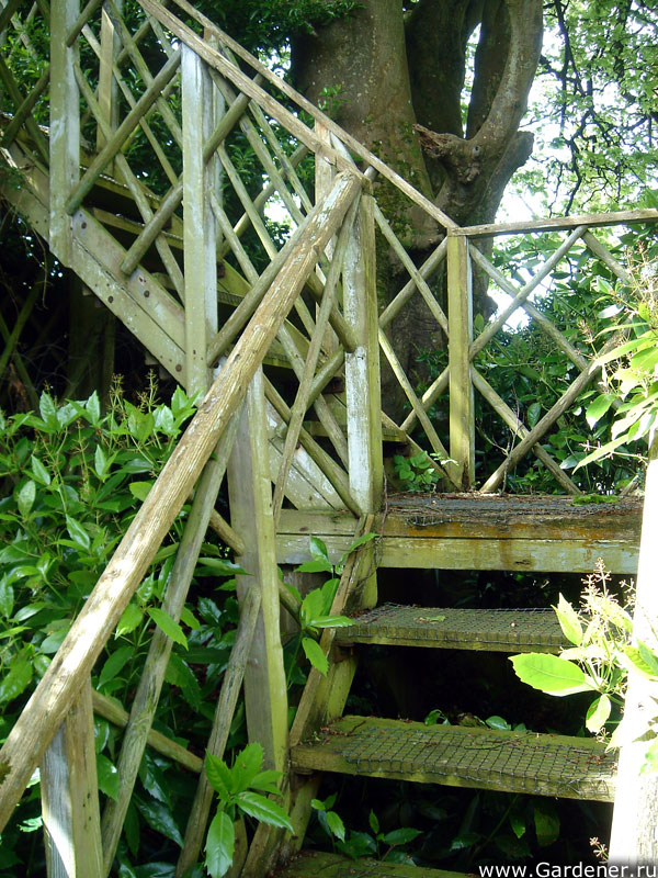 sad_irlandii_bally_maloe_cookery__school_gardens_12.jpg