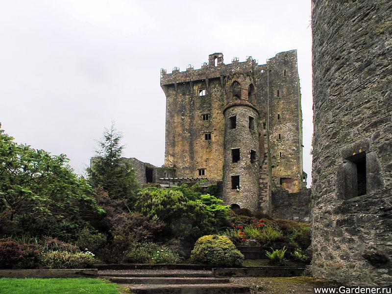 sad_i_zamok_blarney_castle_and_gardens_13.jpg